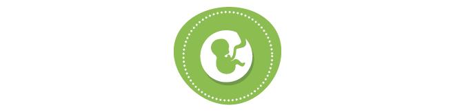 Directorio - Ginecología y Obstetricia